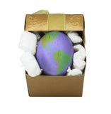 Eggs with world earth texture Stock Photos