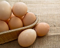 Eggs in a Woven Straw Basket on a burlap Sacking Stock Image