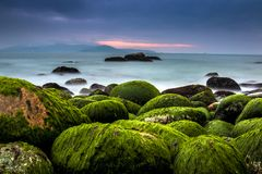 Nature Seascape with Rocks Covered by Green Mosses, Silky Water and Dark Cloudy Sky stock image