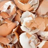 eggshell ρωγμών Στοκ φωτογραφία με δικαίωμα ελεύθερης χρήσης