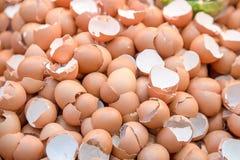 eggshell ταπετσαρία και σύσταση, σπασμένο eggshell Στοκ εικόνα με δικαίωμα ελεύθερης χρήσης