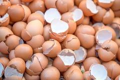 eggshell ταπετσαρία και σύσταση, σπασμένο eggshell Στοκ Εικόνες