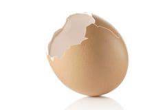 eggshell пустой стоковое изображение