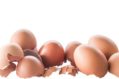 Eggshell. (Rest of the egg shell Royalty Free Stock Images