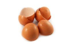 eggshell fotografie stock