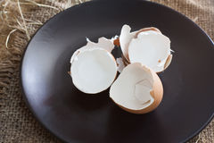 eggshell imágenes de archivo libres de regalías