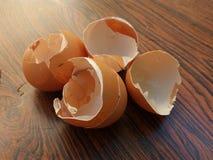 eggshell fotos de archivo libres de regalías