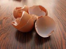eggshell fotografie stock libere da diritti