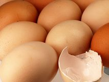 Eggshell against equal rows lying eggs Royalty Free Stock Photography