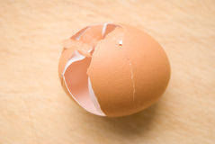 Eggshell Stock Images