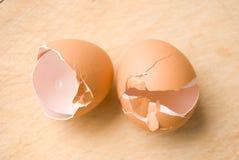 Eggshell Stock Image