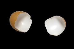 Eggshell isolated on black background Stock Images