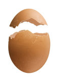 Eggshell isolated on white background Stock Images