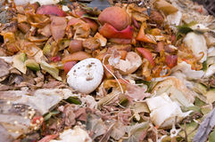 An eggshell in the kitchen waste royalty free stock photography