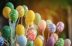 Eggshells цвета Стоковое Фото