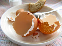Eggshells Stock Photos