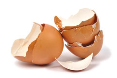 Eggshells Stock Photo