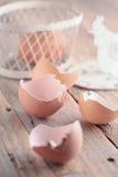 Eggshells Stock Photo