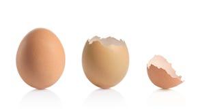 Eggshells Royalty Free Stock Image