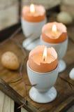 Eggshells as candles Royalty Free Stock Photo