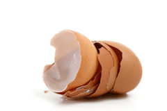 Eggshells Royalty Free Stock Images