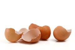Eggshells Royalty Free Stock Photos