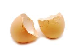 Eggshells on white Stock Photos