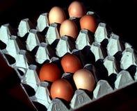 Eggtime Fotografia de Stock