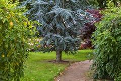 Egin, biblischer Gartenweg im Herbst. Stockbilder