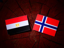Egipcjanin flaga z norweg flaga na drzewnym fiszorku odizolowywającym Zdjęcie Stock