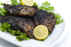 egipcjanin piec na grillu Nile tilapia zdjęcie royalty free