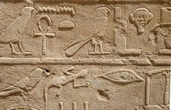 egipscy hieroglify Zdjęcia Royalty Free