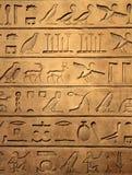 egipscy hieroglyphics Zdjęcia Royalty Free