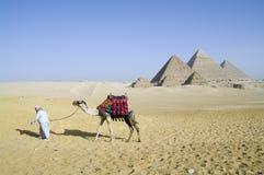 Egipscy ostrosłupy Obrazy Stock