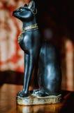 Egipski kot Zdjęcia Royalty Free