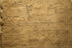 Egipski muzeum Berlin w Niemcy Obraz Royalty Free