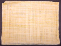 Egipski papirus Obrazy Royalty Free