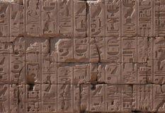 egipskie hieroglify Obraz Royalty Free