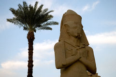 Egipt obraz royalty free