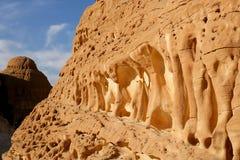 Egipt Desert Stock Images