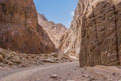 Egipt góry Synaj pustynia, Barwiony jar Obrazy Stock