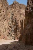 Egipt góry Synaj pustynia, Barwiony jar Zdjęcia Stock