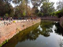 Egipt Giza zoo Zdjęcie Stock