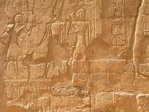 Egiptian hieroglyps Royalty Free Stock Images
