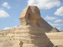 Egiptian som sphing Arkivbild