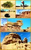 Egipto de surpresa. Deserto da colagem. imagem de stock