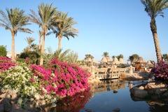 Egipto. Sharm-EL-Jeque del centro turístico Fotos de archivo