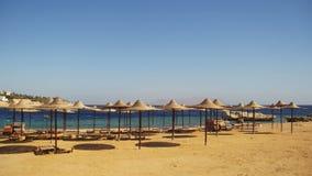 Egipto, Sunny Beach vacío con los paraguas, camas de Sun en el Mar Rojo almacen de video