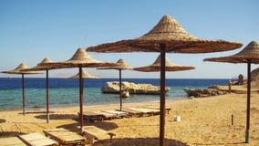 Egipto, Sunny Beach vacío con los paraguas, camas de Sun en el Mar Rojo metrajes
