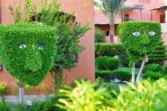 Egito, Hurghada, em setembro de 2015:- árvores e arbustos decorativos mim Foto de Stock